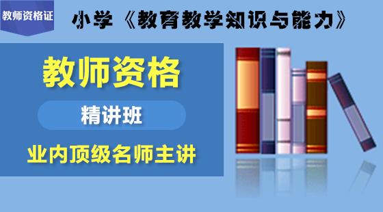 教育教学知识与能力精讲班